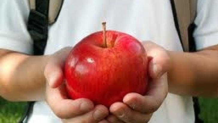 Elevii din Prahova vor primi mere din această săptămână
