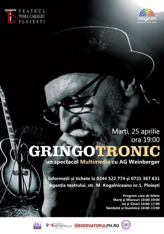 Concertul GRINGOTRONIC  s-a amanat