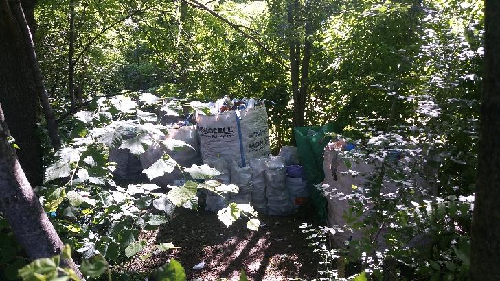 Deşeuri  reciclabile depistate în Cartierul Nord