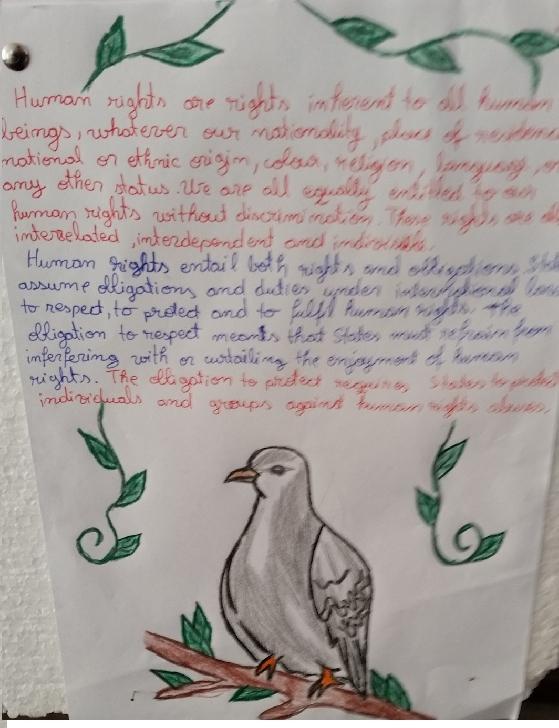 """Ziua Internaţională a Drepturilor Omului sărbătorită la Şcoala Gimnazială ,,Gh. Popescu"""", Mărgineni-Slobozia"""