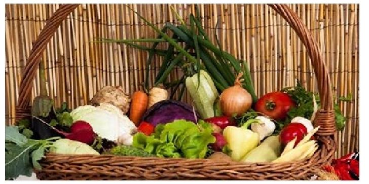 CONCORDIA Agricultură promoveaza o alimentaţie sănătoasă