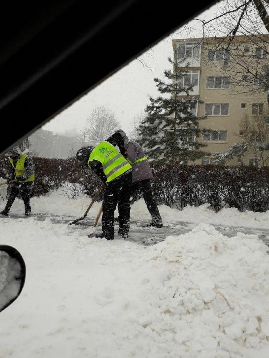 Primaria Municipiului Ploieşti a derulat activităţi  pentru  indepartarea zăpezii