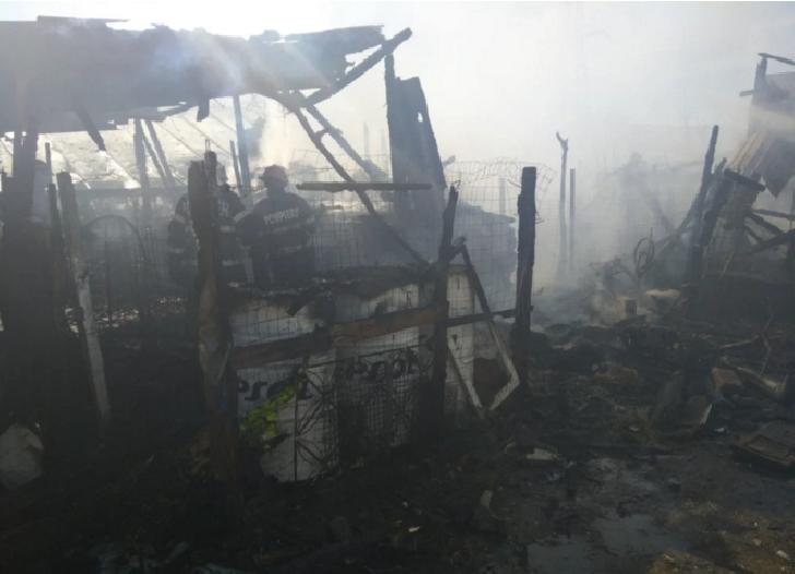 Doi iezi au fost salvaţi de un echipaj Smurd Prahova