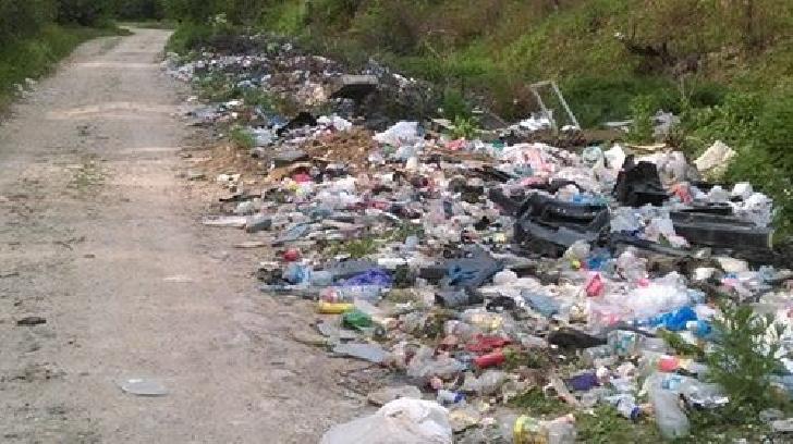 Deşeuri reciclabile abandonate pe domeniul public