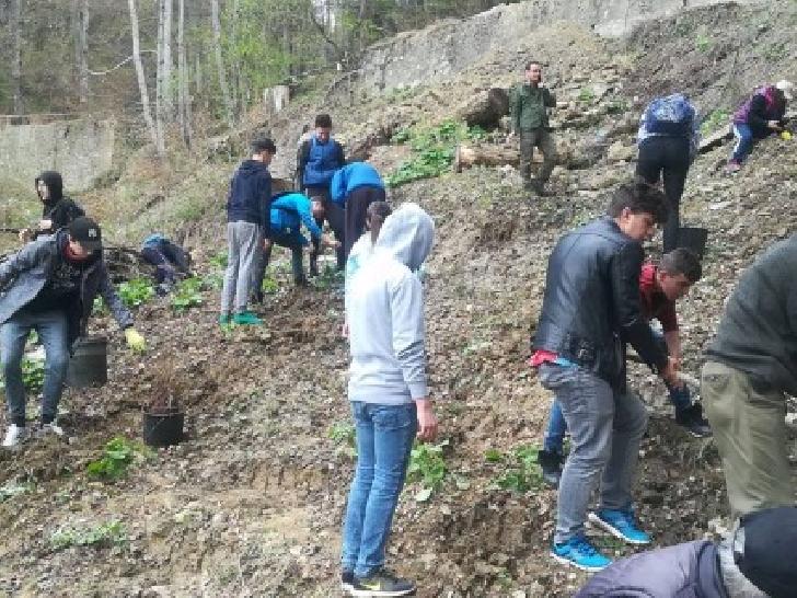 """Elevii din judeţul Prahova, cei mai buni din ţară la """"Plantare"""" în cadrul Concursului Naţional ecOprovocarea"""
