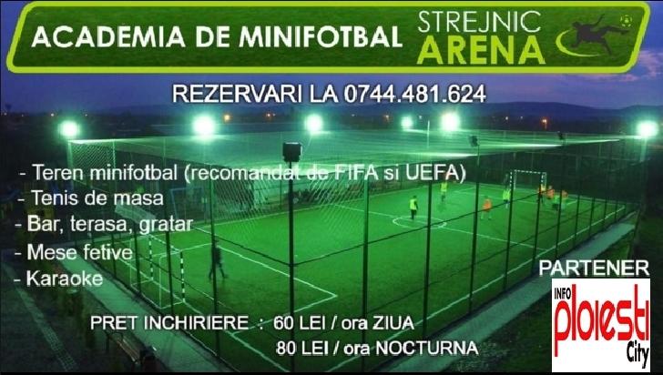 Gazonul sintetic de la Arena Minifotbal Strejnicu a fost amenajat de Sport Arena
