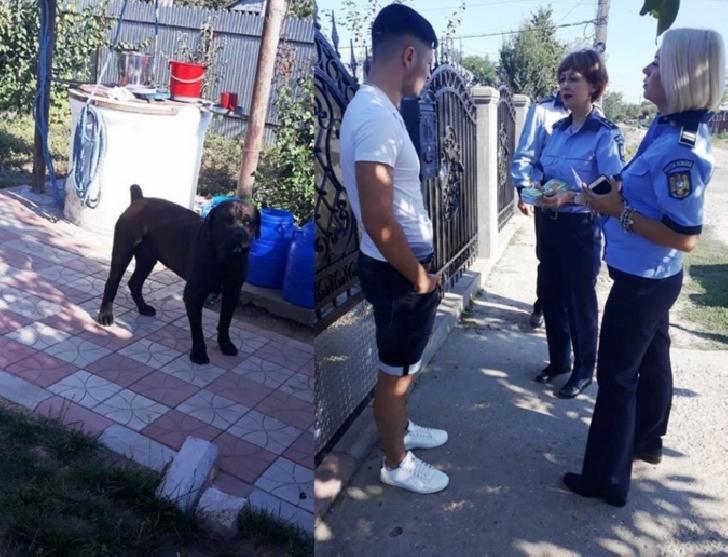 Avertismentul Politiei Romane. Toţi românii care au animale de rasă sunt vizaţi