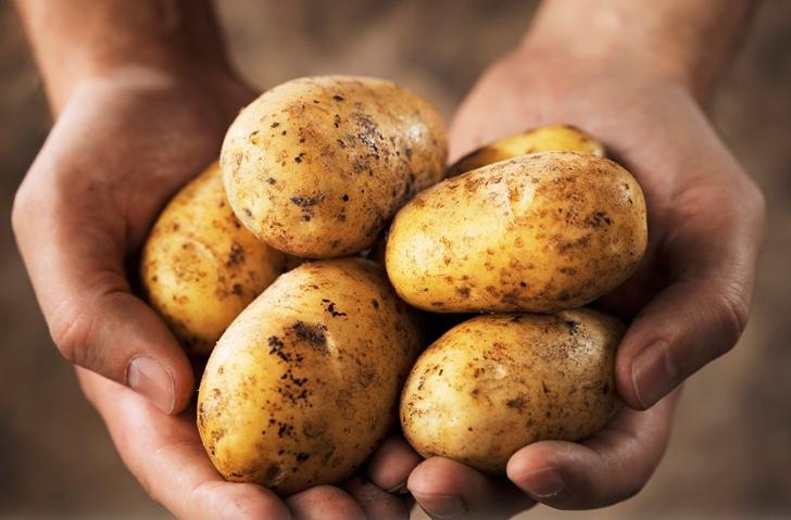 Cele mai sănătoase 10 alimente de pe planetă