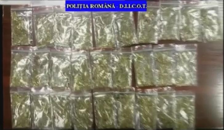 Droguri găsite la Ploieşti, în urma unor perchezitii ale DIICOT Prahova