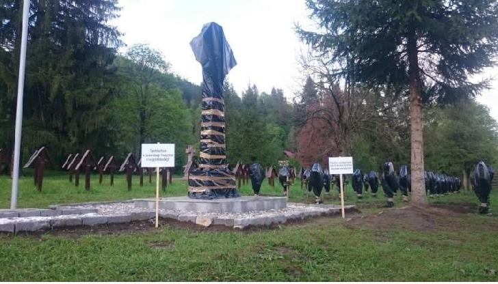 Reacţii puternice venite din partea societăţii civile,în cazul crucilor devastate in Cimitirul eroilor