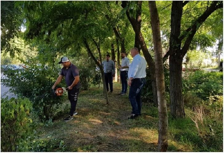 Actiune de salubrizare, igienizare şi mentenanţă a spaţiilor verzi din zona Pârâului Dâmbu