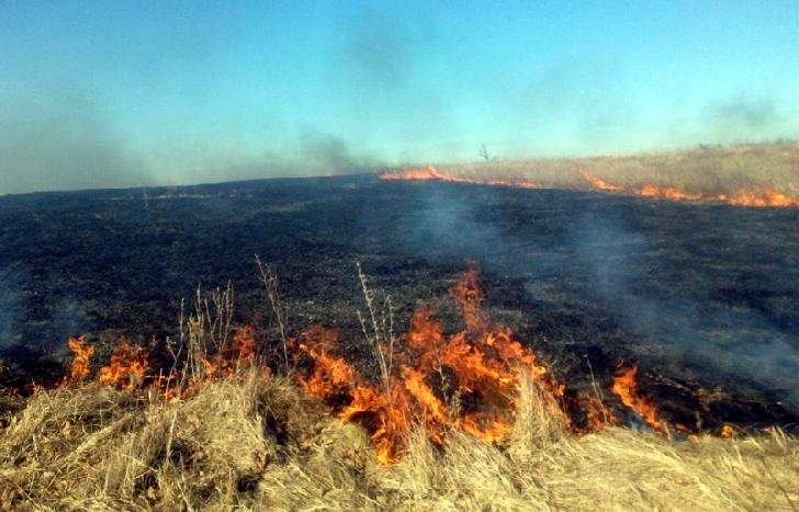 Pompierii militari prahoveni au lichidat cinci incendii de vegetatie  de vegetaţie uscată