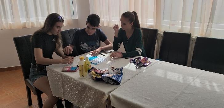 """Asociaţia """"Tinerii Voluntari – Valea Călugărească"""" a organizat în judeţul Sibiu 3 ateliere de lucru pentru 18 tineri, elevi ai liceelor prahovene"""