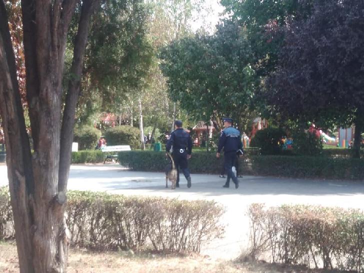 PATRULE CANINE, AU ÎNSOŢIT POLIŢIŞTII DE PREVENIRE ÎN ACŢIUNI ÎN PARCURILE DIN PLOIEŞTI