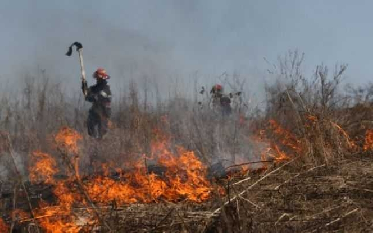 Un incendiu de vegetaţie a oprit circulaţia trenurilor, timp de 30 minute