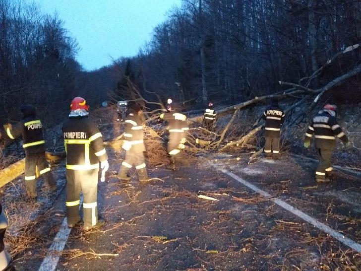 Pe parcursul nopţii trecute, pompierii militari prahoveni au acţionat pentru a degaja copacii căzuţi
