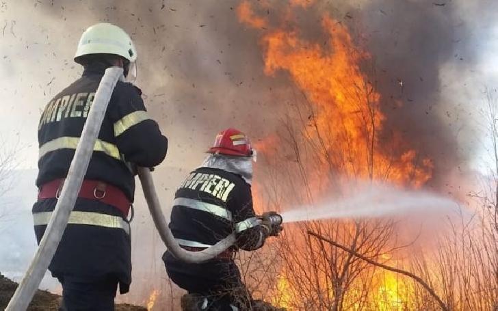 Incendiu de vegetaţie uscată în comuna Bărcăneşti, sat Ghighiu
