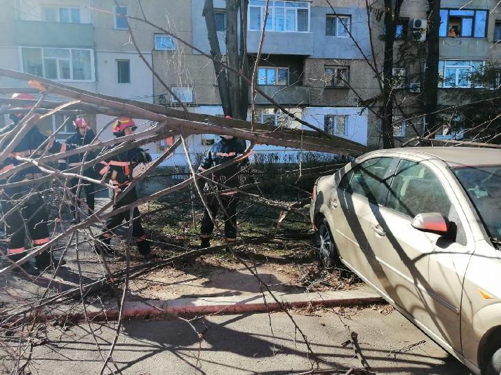 Vântul a făcut prăpăd în judeţul Prahova şi municipiul Ploieşti. Pompierii au intervenit prompt
