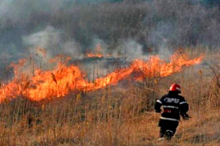 Pompierii au intervenit la două incendii de vegetaţie uscată în Prahova