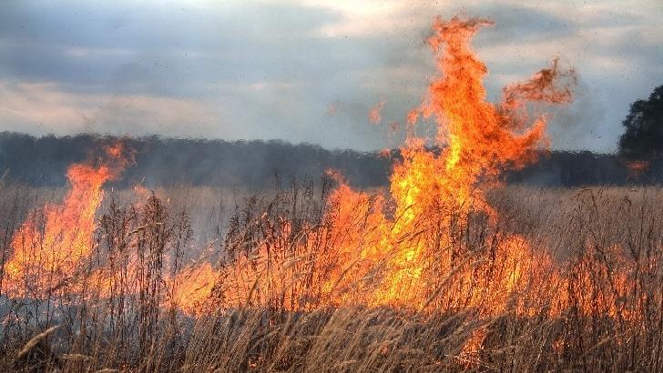 Incendiu vegetatie uscata in comuna Targsoru Vechi