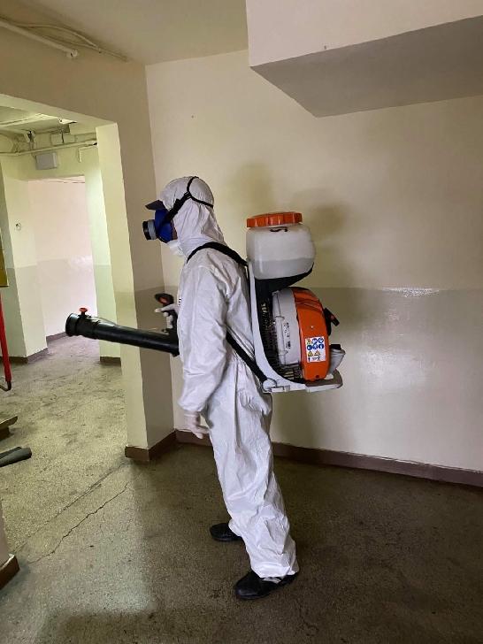 Primaria Municipiului Ploiesti .Program dezinfectie blocuri ,in  zona Nord