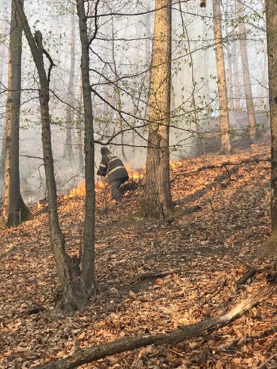 Mai multe incendii de vegetaţie au avut loc în judeţul Prahova