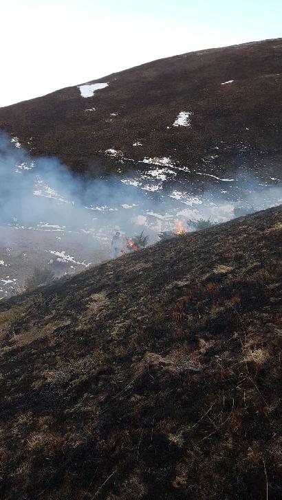 Incendiu vegetaţie uscată în localitatea Valea Doftanei
