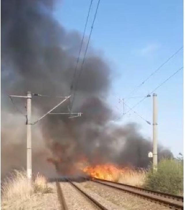 Incendiu de vegetaţie pe calea ferată de la Albesti (video)
