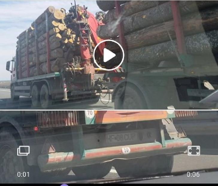 Transport ilegal de lemne pe Autostrada 1, Ploiesti-Bucuresti? Garda Forestieră mai există?Autoritatile tac ?