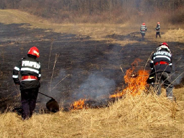 Incendiu de vegetaţie uscată pe o stradă din Ploieşti