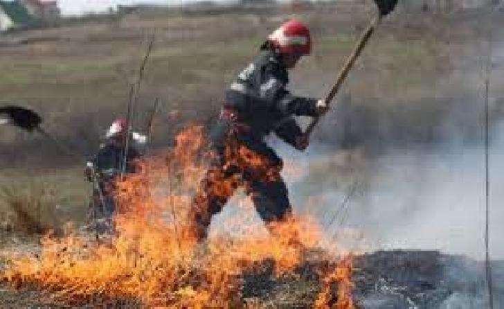 Incendiu într-un lan de grâu, la Băicoi