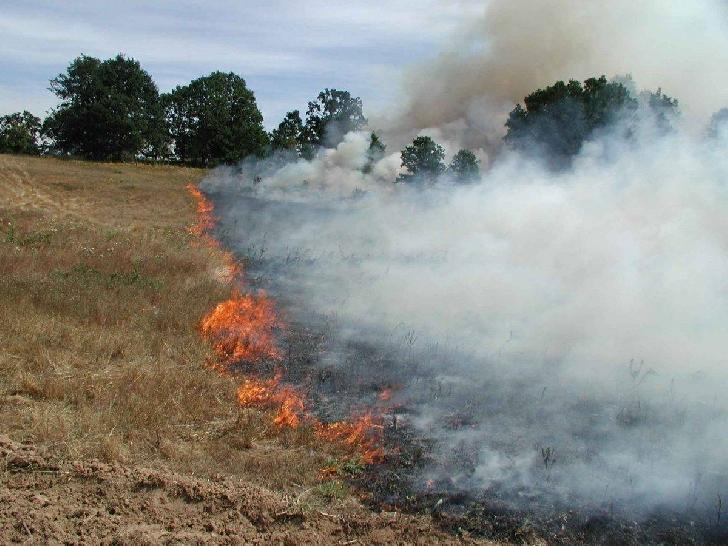 Incendiu de furaje la Floreşti