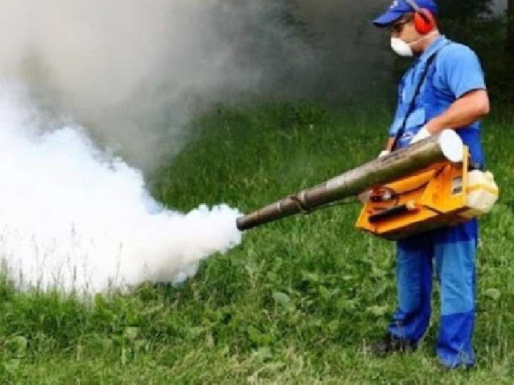Primaria Municipiului Ploieşti incepe  acţiunile  de  dezinsecţie pe domeniul public