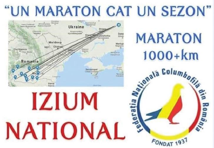 Ultimul maraton columbofil a adus rezultate reprezentantilor din Prahova
