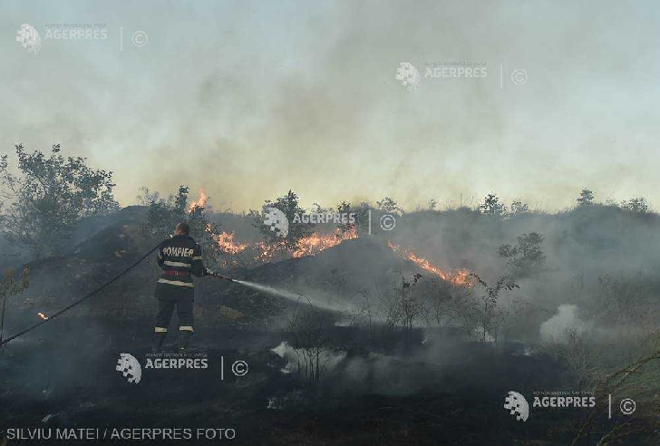 Incendiu de vegetaţie în zona Ploieşti Triaj