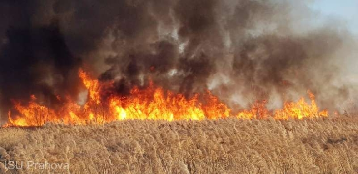 Incendii de vegetaţie uscată în Prahova
