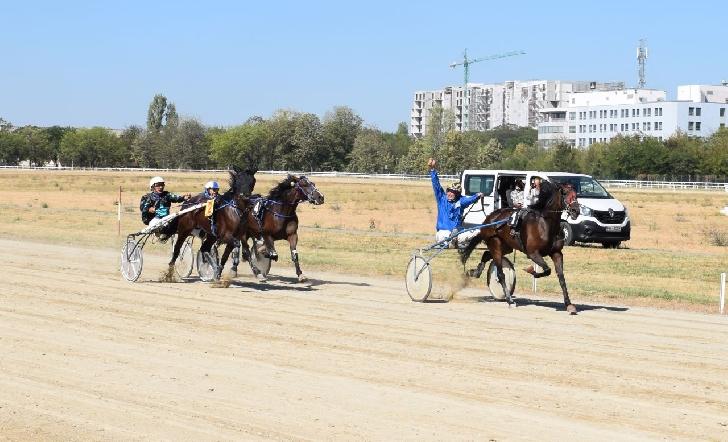 Dona Pilar a câştigat Premiul cailor de 3 ani