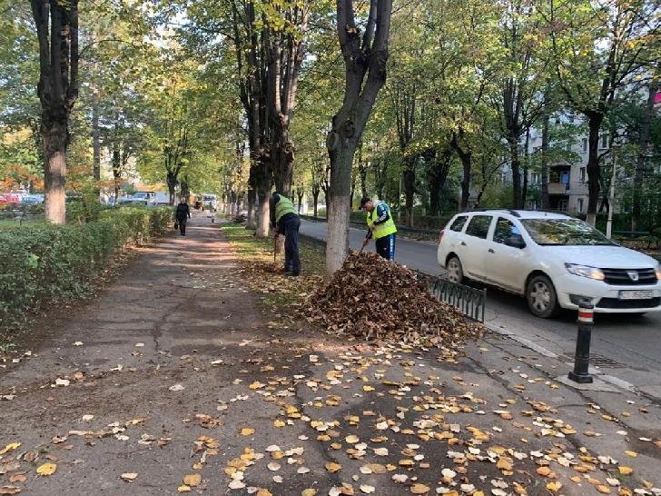 Primarul Ploiestiului a dispus demararea unui amplu program de curăţenie şi igienizare generală a oraşului