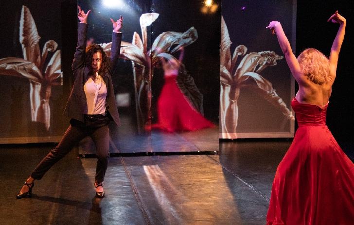 """Micro turneul Teatrului Apropo cu spectacolul """"Dincolo de oglindă"""" continuă online. Spectacolul este oferit gratuit"""