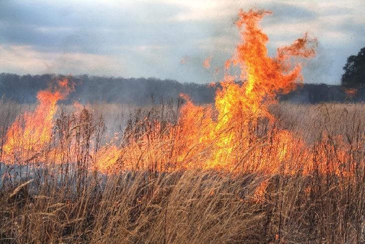 Atenţie: incendiile de vegetaţie uscată se pot propaga la gospodăriile populaţiei, punând în pericol viaţa şi bunurile cetăţenilor