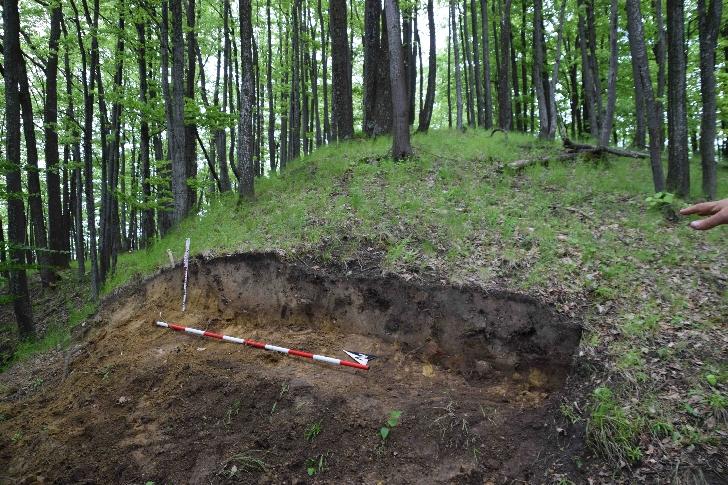 Cercetări arheologice pe Valea Teleajenului 2021