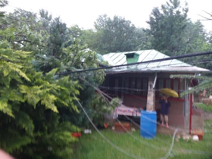 ISU Prahova a intervenit la degajarea unui copac căzut pe o casă, in satul Proviţa de Sus