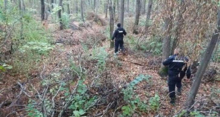 O femeie din Ditesti este căutată în pădure de pompieri, jandarmi, Politie si voluntari.Aceasta a plecat la cules ciuperci
