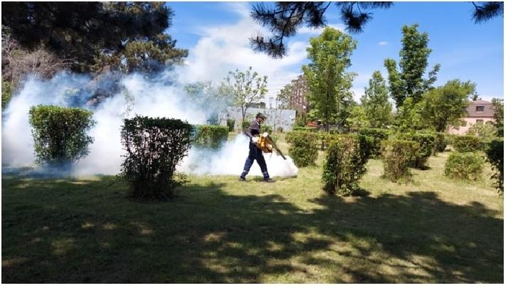 Primaria  Ploieşti va efectua,  în perioada 19- 30 iulie 2021, servicii de dezinsecţie combatere ţânţari, pe suprafaţa domeniului public