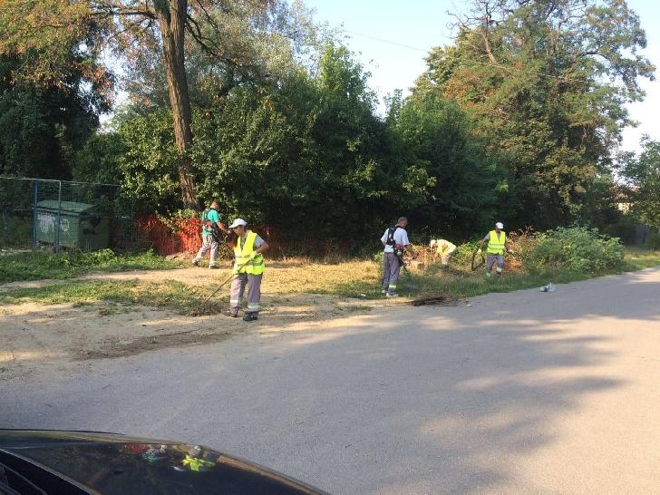 Primăria Municipiului Ploieşti a semnat  un nou contract pentru activităţile de curăţenie căi publice şi deszăpezire